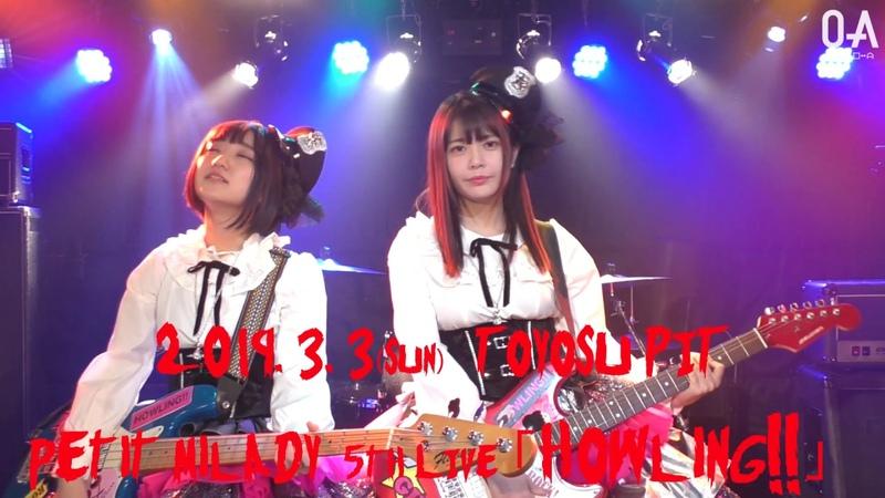 Petit milady 5th LIVE「Howling!!」開催2週間前 コメント動画 petitmilady