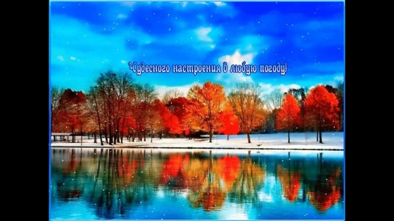 Doc61852971_478036491.mp4