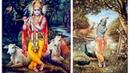 Битту Маллик Харе Кришна Bittu Mallick Hare Krishna Маха Мантра Maha Mantra