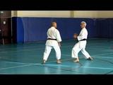 2013 09 21 seminar abe kumite SD