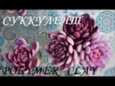 Суккулент из холодного фарфора Succulent from cold porcelain 肉质的冷瓷器