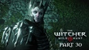 The Witcher 3 Wild Hunt Walkthrough Gameplay Part 30 - The Battle Of Kaer Morhen (PS4)