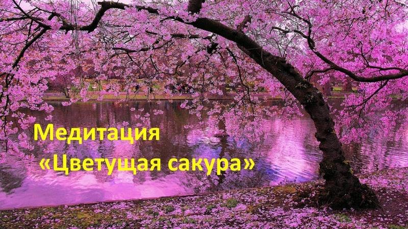 Медитация Цветущая сакура на выход из подавленных состояний, депрессий. [Отилия]
