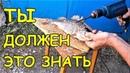 ТОП 10 ЛУЧШИХ ЛАЙФХАКОВ для РЫБАЛКИ