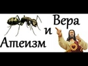 Борис Юлин и Гоблин Про атеизм веру и муравья
