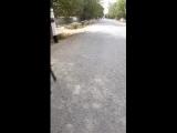 Дамир Махаббат - Live