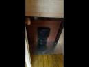 Баня бочка видеообзор