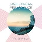James Brown альбом Veil of Haze