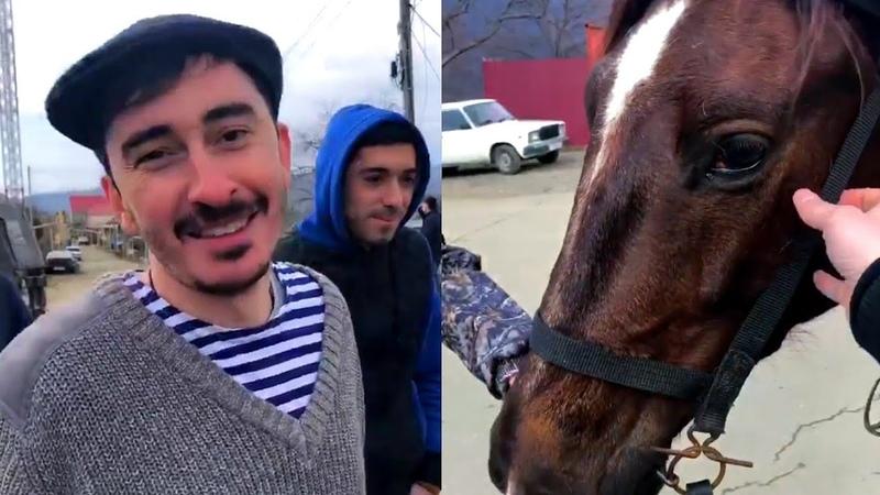 Каха и Серго Сколько Лошадей У Лошади?!