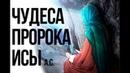 Чудеса, ниспосланные пророку Исе Всевышним Аллахом