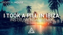 Mike Posner - I Took A Pill In Ibiza Instrumental Remix