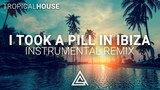 Mike Posner - I Took A Pill In Ibiza (Instrumental Remix)