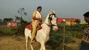 Women's Horse riding on highway side