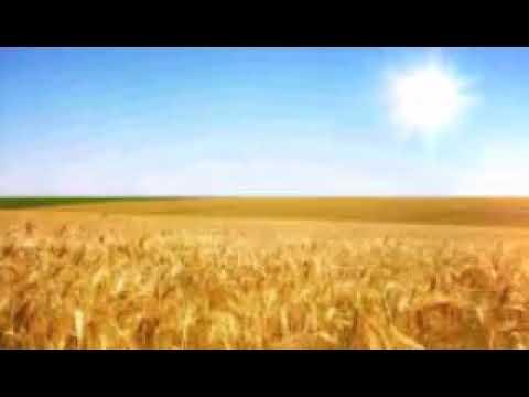 Село i люди- итс май лайф веселая и прикольная песня