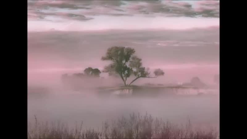 Туман обман Антиреспект.mp4