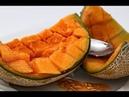 Сорта дынь и их главные особенности которые помогут выбрать самую вкусную