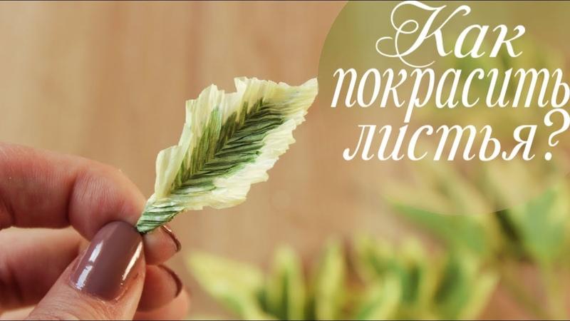 Крашу листья БЕЛИЗНОЙ. Зелень из гофрированной бумаги. Курс Свежесть