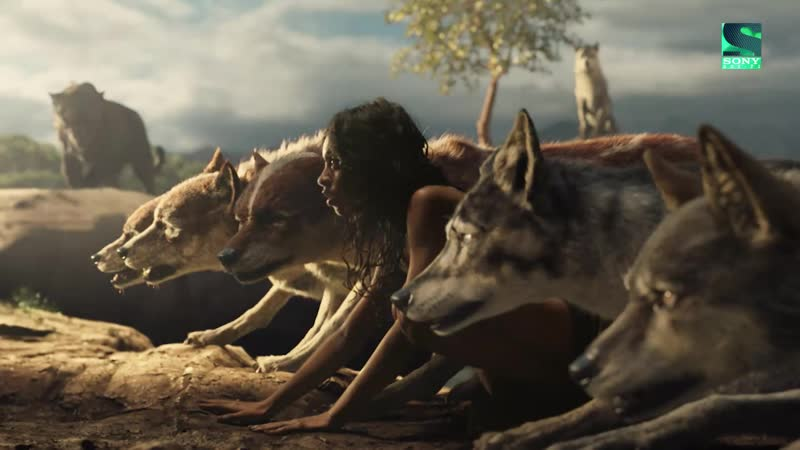 Sony Movie News - Маугли