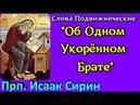Об Одном Укорённом Брате - Прп. ИСААК СИРИН Слова Подвижнические Слово 14