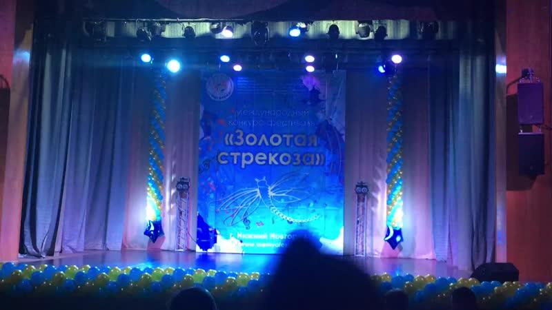 Нижний Новгород. Лебедушка