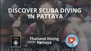 Discover Scuba Diving in Pattaya with Thailand Diving Club