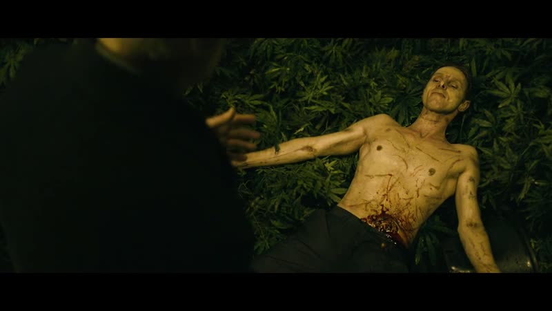 Гарри Браун (2009) жанр: триллер боевик