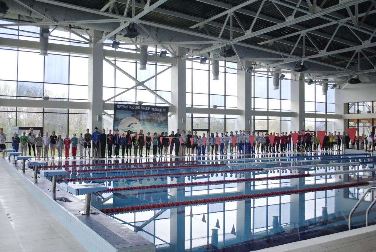 В Петровском районе состоялось открытие чемпионата ДНР по плаванью памяти Виктора Ёшина