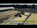 Строительство площадки откорма КРС Курская обл