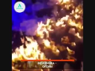 Вечеринка - огонь | АКУЛА