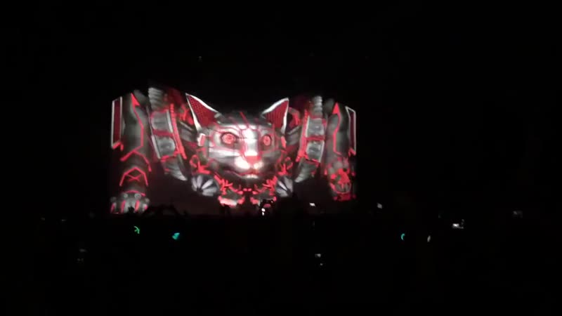 YOU Excision