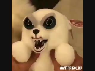 Сравниваем игрушку с живой собачкой. Видео прикол