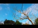 Music Stive Morgan Mix Video Arti Marco Enigmatic Mix Video Edit