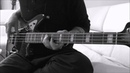 Pearl Jam - Jeremy Bass Cover
