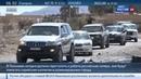 Новости на Россия 24 • Освобожденная Пальмира: работы предстоит еще много
