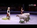 Шоу Золушка в цирке на Фонтанке