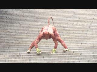 Леопардовое безумие: пожилой китаец придумал оригинальный вид фитнеса