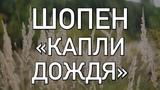 ФРЕДЕРИК ШОПЕН КАПЛИ ДОЖДЯ (НЕЖНОЕ ПРОИЗВЕДЕНИЕ)
