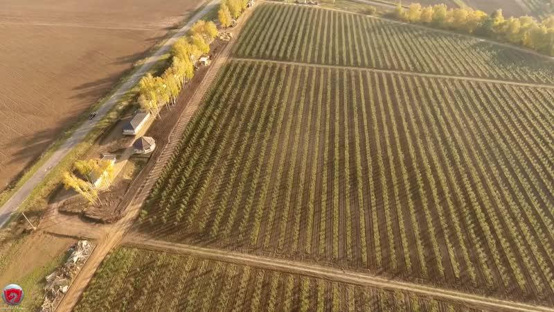 Vasilaki Films Заказ на продажу аграрного бизнеса