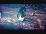 ✘ ULTRARIP ✘ † ВАЙНЫ ЗАБИВЫ ОФФ МУЗЫКА VINE l vine # l Ultra Spirit special | by Yali l ОТ ГЕПАРДА
