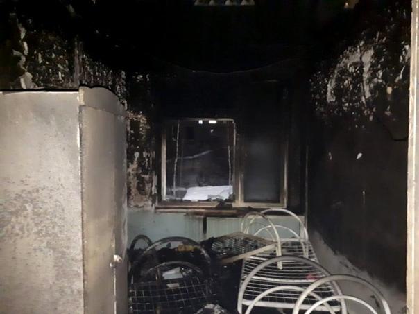 66 детей эвакуировали из-за пожара в Центре социальной помощи