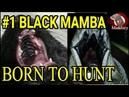 Episode 1 The Journey Begins Black Mamba Born to Hunt