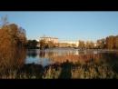 Муринский парк осень лонг