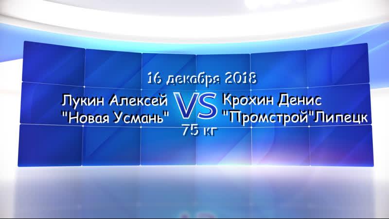 до 75 кг Лукин Алексей Новая Усмань VS Крохин Денис Промстрой Липецк
