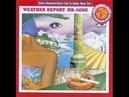 Weather Report- Pinocchio