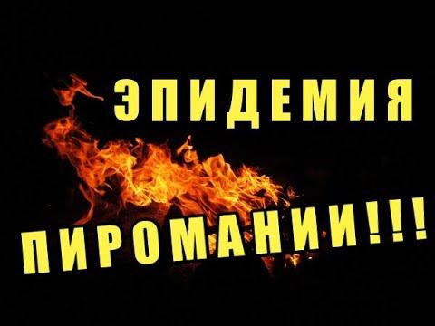 Агония Бесноватого Инквизитора ТП БИНГО АЛЕНЬ МД МИСП АЛЬФАЧ