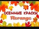 Осенние краски Florange