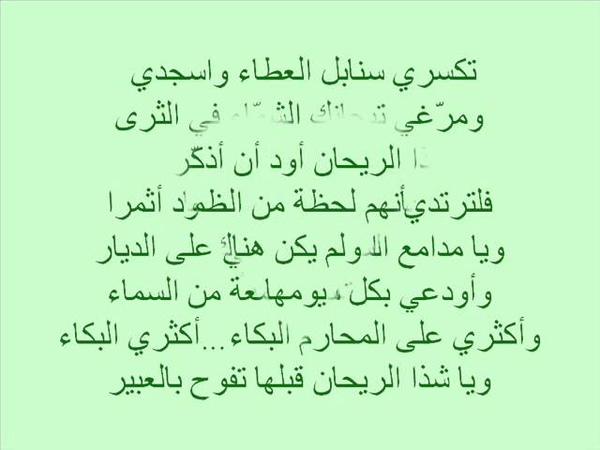 قناة نواعير تقدم ملحمة الدعوة المنشد أبو م
