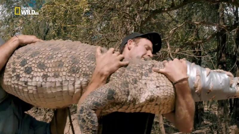 Зеленый ковбой из Австралии. [s03 e04] Кэмпинг с крокодилами (2018) [P1. Велес, С.Войнич] 1.08 ts