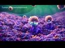 CTLA 4 Inhibition