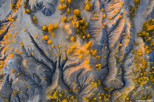 Кондуки, Тульская область. Вид сверху.